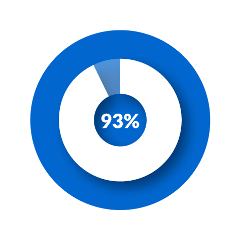 pie graph 93 percent