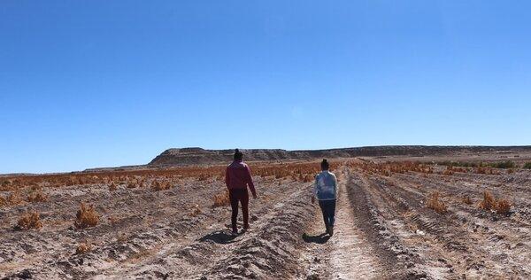 women walking through barren field