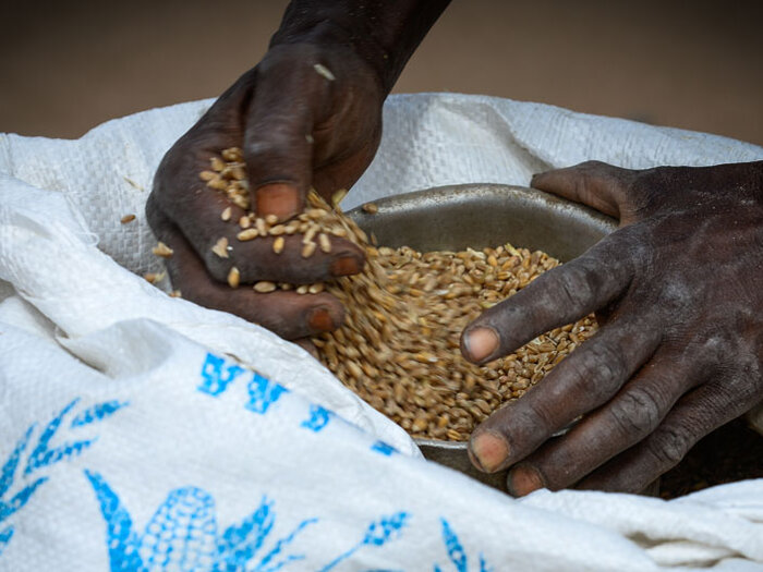 hands taking food from WFP bag