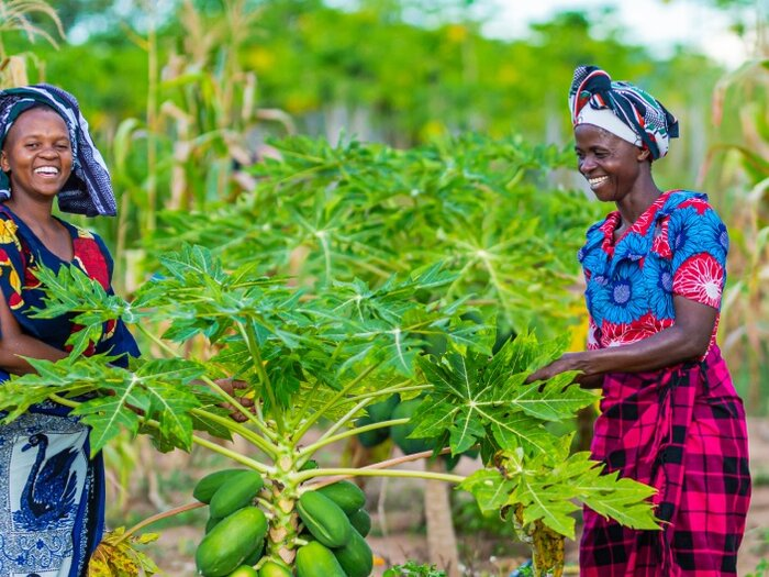 two women in the field