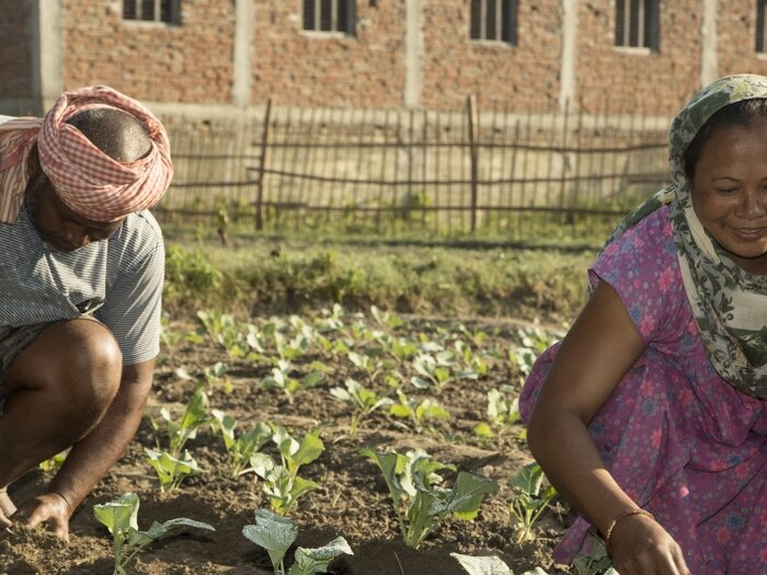 a man and a woman are working in the field