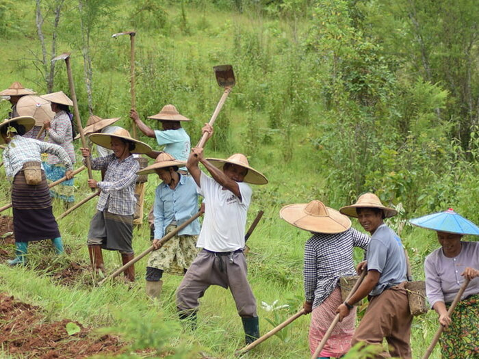 men and wonen working in the fields
