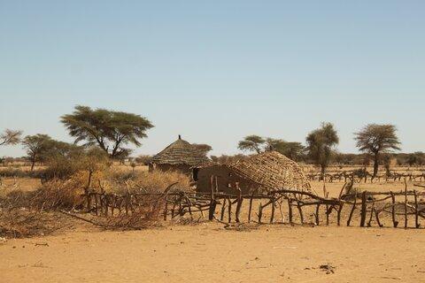 My trip to Senegal's Sahel as alarm bells ring…