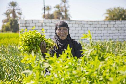 Four Egyptian women rewriting their lives