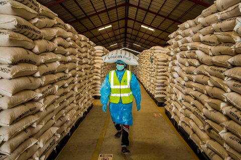 World Food Day: How WFP works towards food security — one sack at a time