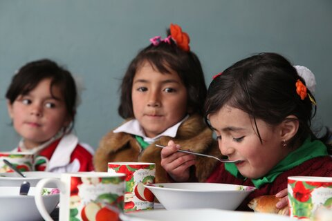 Filling bellies, feeding minds: Improving nutrition through school meals