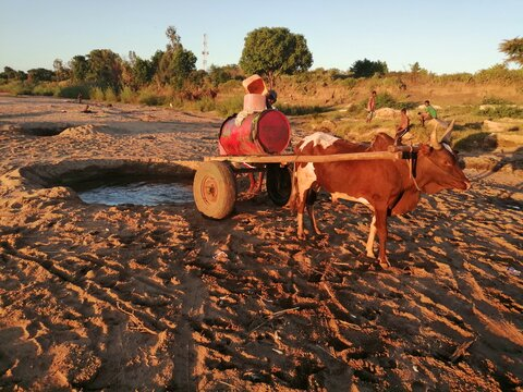 How drought is pushing more people into hunger in southern Madagascar