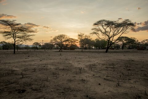 Zimbabwe in the grip of hunger