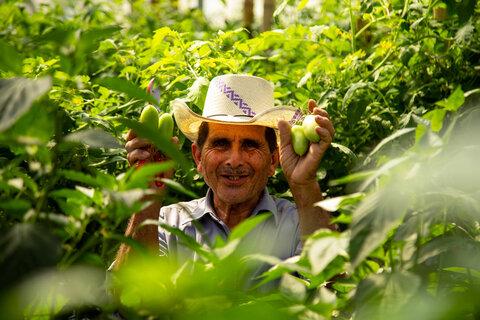 El Salvador: Growing 'green gold' in Central America's Dry Corridor