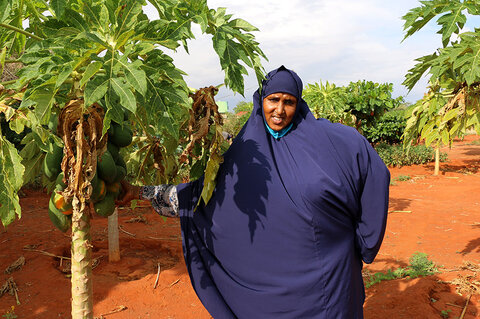 Lean on me: The farmer in Kenya empowering vulnerable women