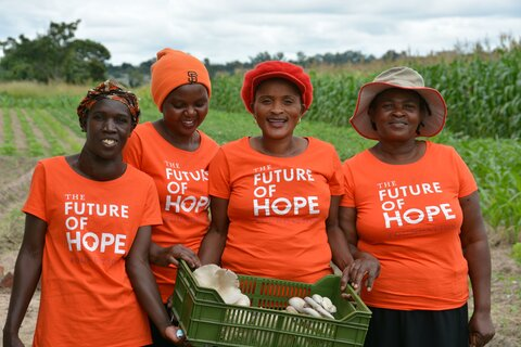 Zimbabwe: Mushroom-growing means independence for women farmers