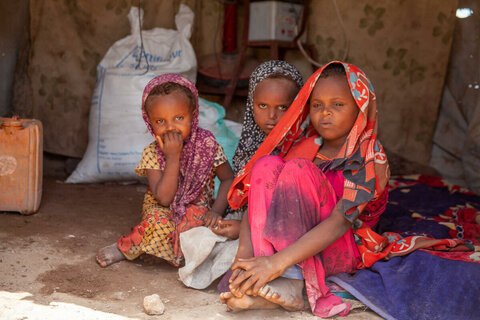 Acute hunger at five-year high, study warns, as famine looms for millions
