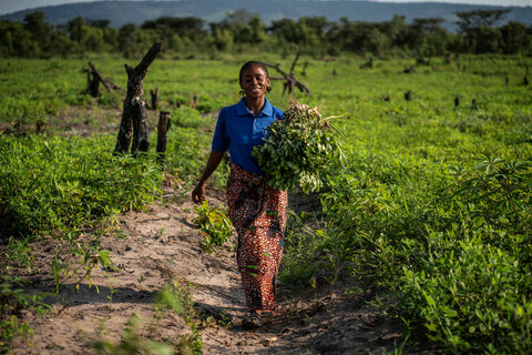 Food for peace: WFP and FAO work to end conflict and hunger in DRC