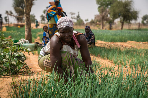 Hunger pandemic: Food security report confirms WFP's worst fears