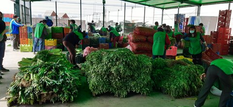 Rescuing discarded food from markets to feed thousands in Peru