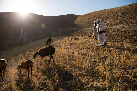 Afghanistan: WFP remains standing – a fortress against hunger
