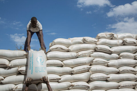 How WFP is helping keep the air clean and the skies blue