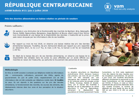 Central African Republic - mVAM Monitoring