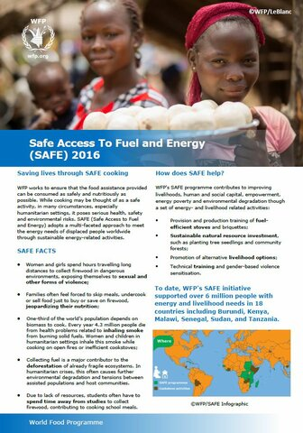 SAFE Factsheet - 2016