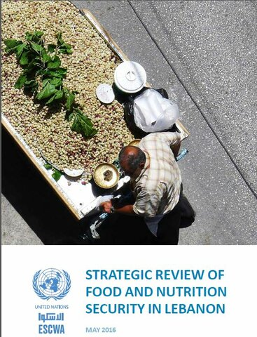 Strategic Review Of Food And Nutrition Security in Lebanon