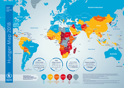2018 - Hunger Map | World Food Programme