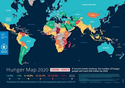 2020 - Hunger Map | World Food Programme