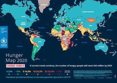 Hunger Map 2020