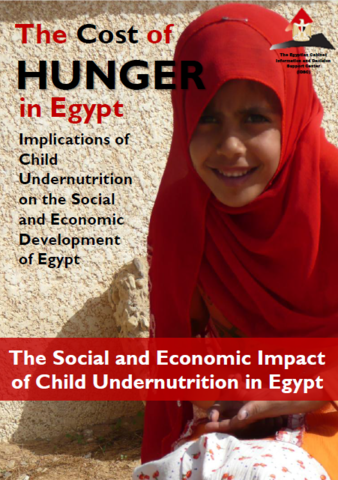 The Cost of Hunger in Africa: Egypt  2013
