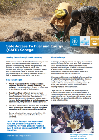 2017 -  SAFE Access to Fuel and Energy Initiative in Senegal