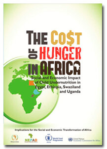 The Cost of Hunger in Africa - 2013