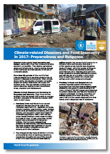 2017 - Climate-related Disasters and Food Insecurity: Preparedness and Response