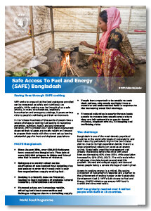 2017 - SAFE Access to Fuel and Energy - Bangladesh