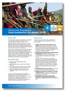 2017 - Food Assistance for Assets