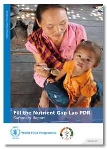 2017 - Fill the Nutrient Gap Lao PDR