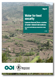 2017 - Water for food security - Lessons learned from a review of water-related interventions