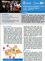 Situation Report - Central African Republic