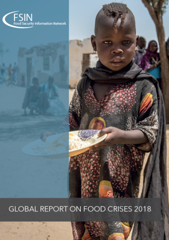 2018 Global Report on Food Crises | World Food Programme