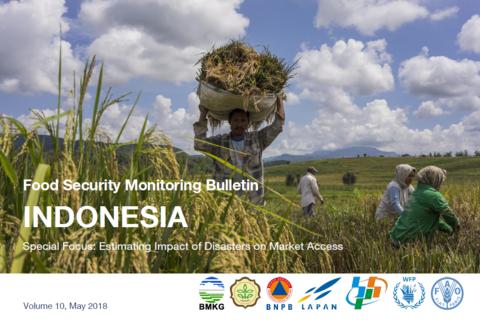 Indonesia - Food Security Monitoring, 2015-2018