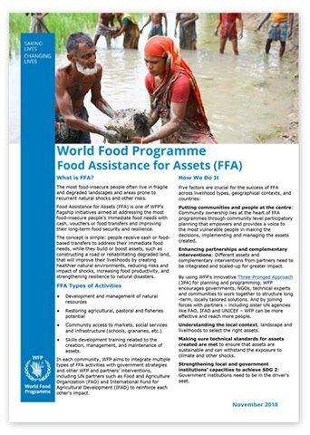 2018 - World Food Programme -  Food Assistance for Assets (FFA)