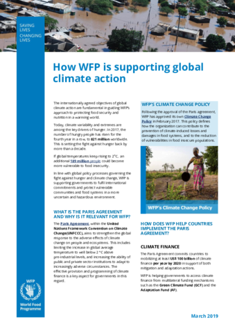 https://docs.wfp.org/api/documents/WFP-0000103348/download/
