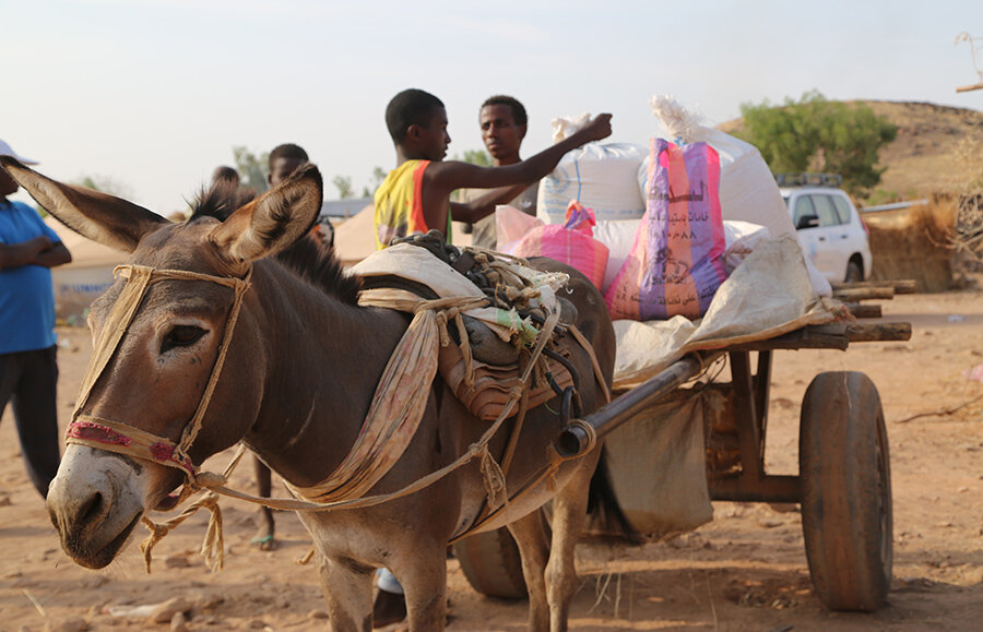 donkeys pull bags of food