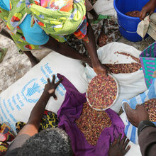 Early action plus investment would avert food crises, saving billions in global food assistance spending