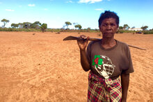 UN Food Agencies Call For Urgent Action To Address Southern Madagascar's Worsening Food Insecurity