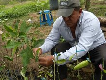 Ecuador: Project in Santa Elena Province Aims to Improve Nutrition of Small Children
