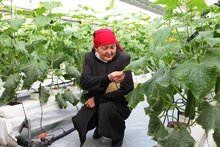 Japan Supports WFP Projects Empowering Rural Kyrgyz Women