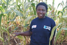 Supporting Farmer Co-operatives in Rwanda