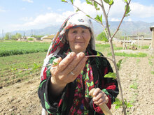 Green Climate Fund Approves WFP-led project for climate change adaptation in Tajikistan