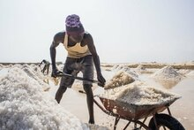 WFP/Ala Kheir, A worker shovels salt in the salt flats of Port Sudan, which has the capacity to produce Sudan's iodized salt needs