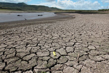 Over 2 Million In Central America Will Need Food Assistance Due To Drought, El Nino