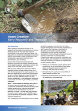 Asset Creation: Early Recovery And Transition